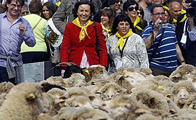 La batalla municipal. Córdoba. Los últimos días del Califato Rojo